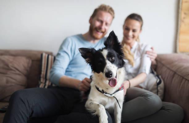La famiglia che assoggetta il cane all' antropomorfizzazione