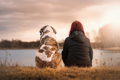 Donna e cane fotografati alle spalle
