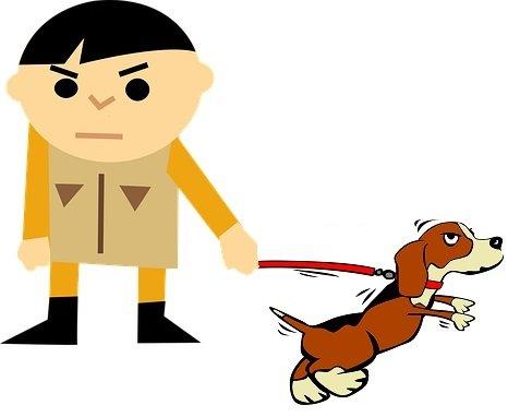 Eccitazione del cane prima della paseggiata