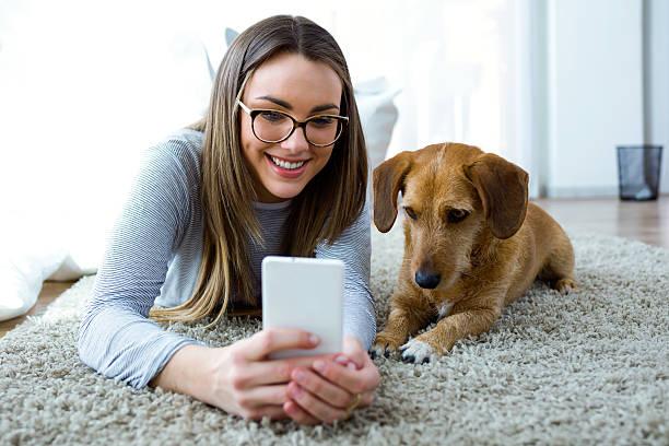 Blogdog